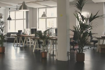 Empty office with plants